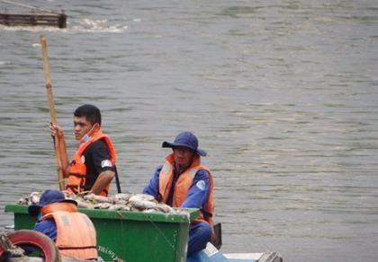 UBND TP chỉ đạo khắc phục tình trạng cá chết ở kênh Nhiêu Lộc