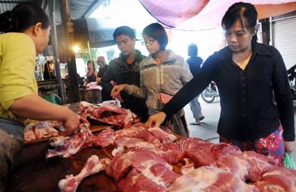 Xử lý nghiêm các đối tượng sử dụng chất cấm trong chăn nuôi