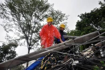 Hà Nội: Cây cổ thụ, cột điện lại gãy đổ sau bão