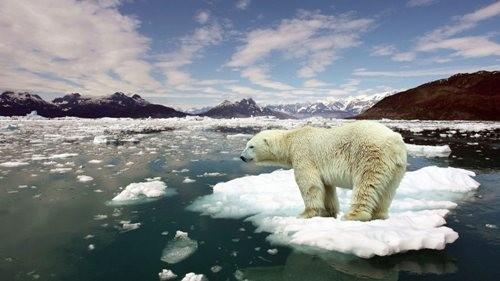 Nguy cơ thay đổi toàn bộ hệ sinh thái