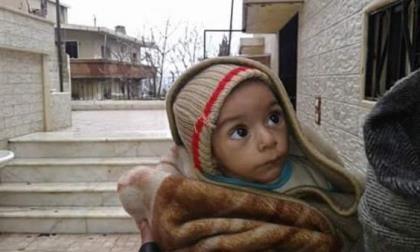 Ăn hết chó mèo, 40.000 người dân Syria ăn cỏ để sống