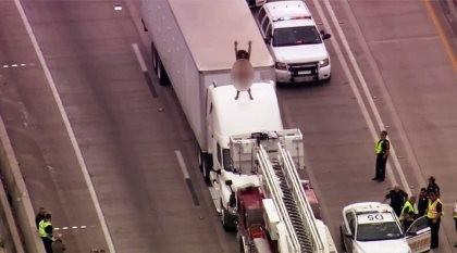 Kẹt đường cao tốc hai tiếng vì người phụ nữ cởi đồ leo nóc xe