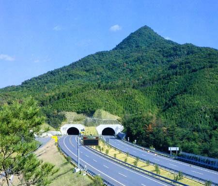 Đâm xe liên hoàn đường hầm cao tốc Nhật