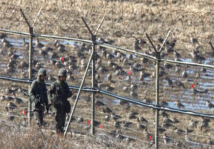 Triều Tiên tăng cường cài mìn ở Khu phi quân sự liên Triều