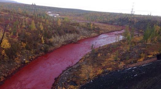 Bí ẩn dòng 'sông máu' ở Nga