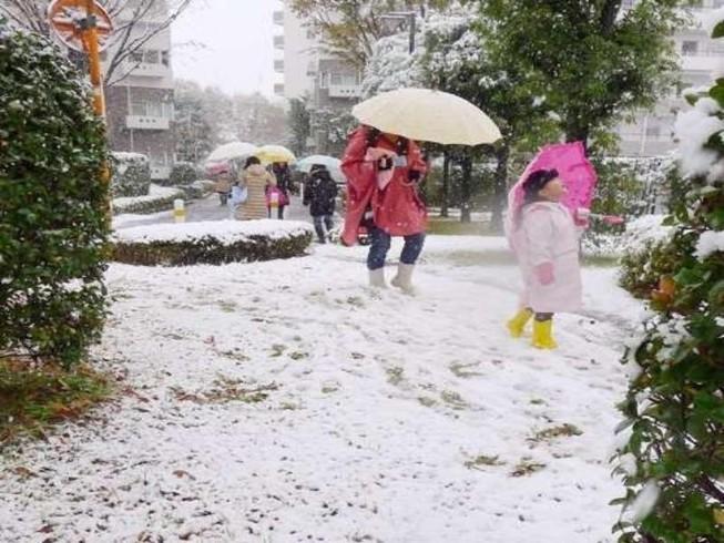 Tokyo đón đợt tuyết bất ngờ sau hơn nửa thế kỷ