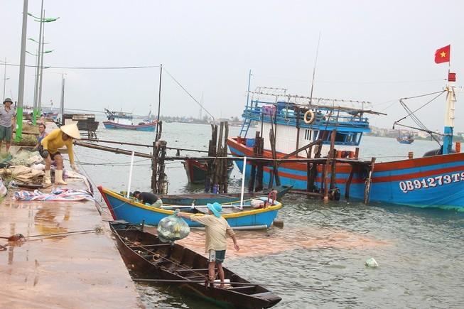 Miền Trung: Tàu vào bờ, dân đốn cây đón bão số 10
