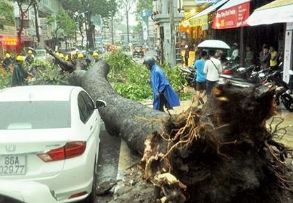 Hàng chục người dân nâng cành cây giải cứu nạn nhân