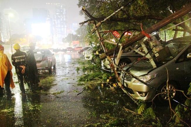 Mưa lớn, cây đổ đè ô tô ở trung tâm TP.HCM
