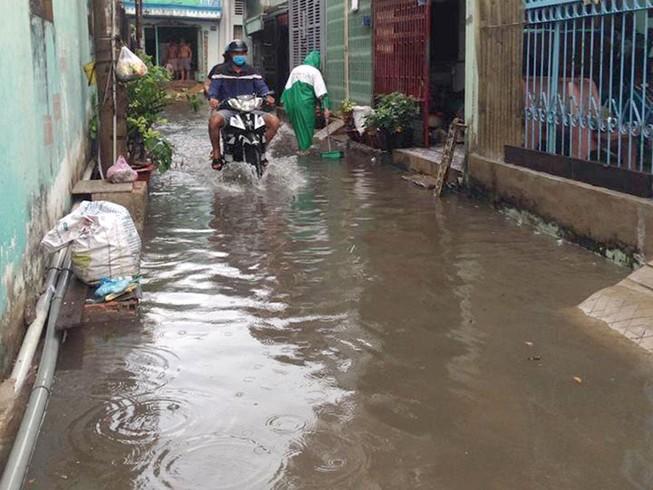 Mưa đột ngột giữa mùa khô, TP.HCM ngập cục bộ
