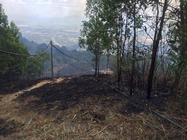 Đã dập tắt vụ cháy rừng trên khu di tích núi Chứa Chan