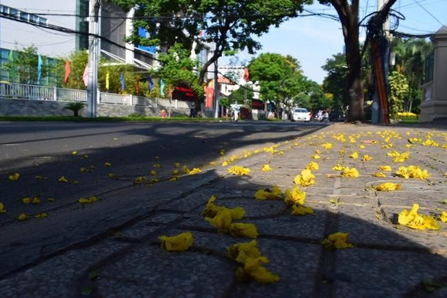 Mồng 1 Tết ở Sài Gòn: Những con đường bình yên