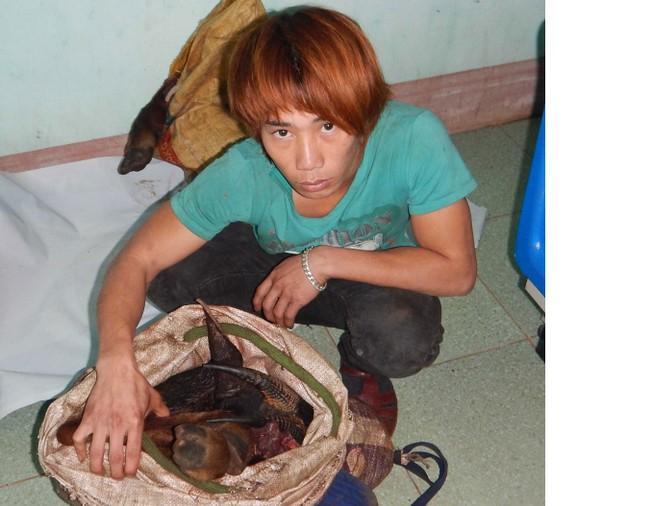 Bắt đối tượng săn Sơn Dương quý hiếm