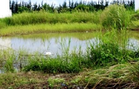 Người đàn ông chết dưới hồ nước với vết chém trên đầu