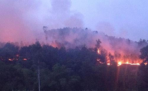 Rừng thông vẫn đang cháy dữ dội ở Nghệ An