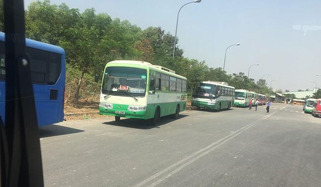 TP.HCM: Chuyển đổi mạnh sang dùng xe buýt nhiên liệu sạch CNG