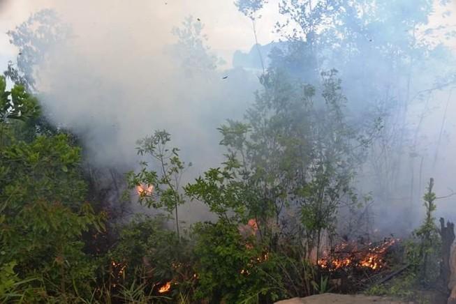 Chưa rõ nguyên nhân cháy rừng dữ dội ở dự án FLC Hạ Long