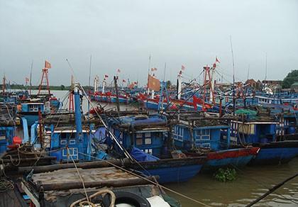 Cấm tàu thuyền xuất bến trước áp thấp nhiệt đới gần bờ