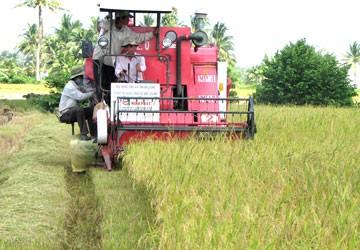 Nông nghiệp là chỗ dựa của nền kinh tế