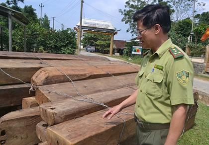 Bắt ba đối tượng cầm đầu trong đường dây phá rừng đặc dụng