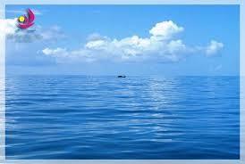 Đưa thuyền viên bị gãy chân trên biển vào bờ cấp cứu