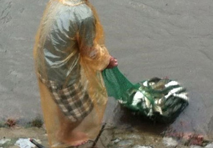Người Hà Nội 'nô nức' ra sông bắt cá sau cơn mưa lớn