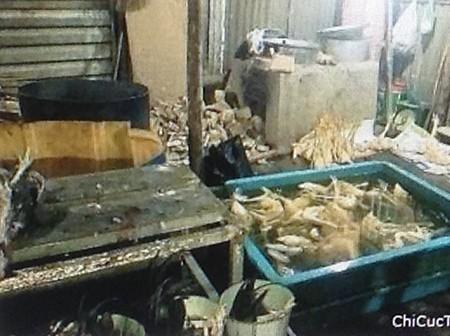 Đề nghị phạt 21 triệu đồng điểm giết mổ gà trái phép