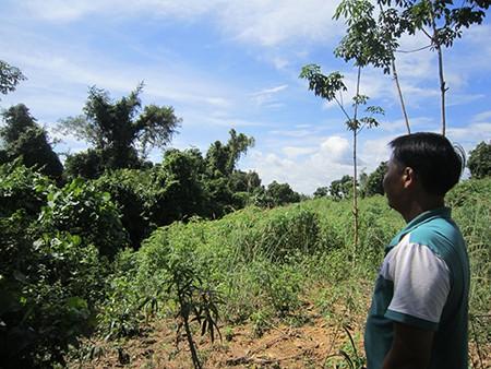 Thanh tra Chính phủ kết luận sai phạm quản lý đất tại Bình Phước