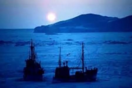 Chấn chỉnh thuyền viên Việt Nam nhảy tàu bỏ trốn