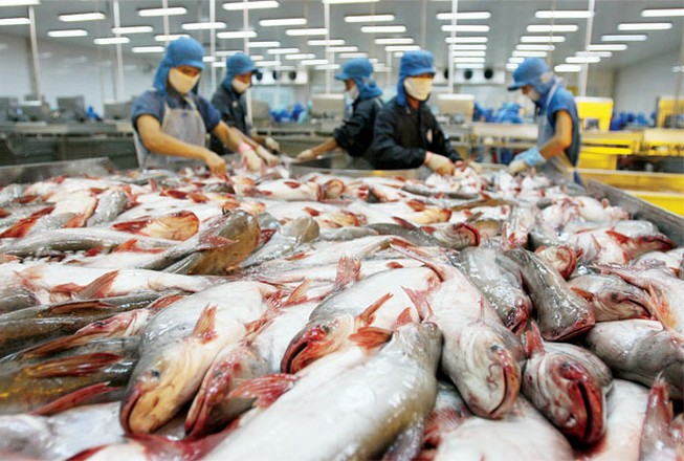 Mỹ cam kết không 'làm khó' cá tra Việt