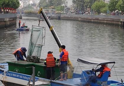 Tách nước bẩn, ngăn cá chết trên kênh Nhiêu Lộc - Thị Nghè