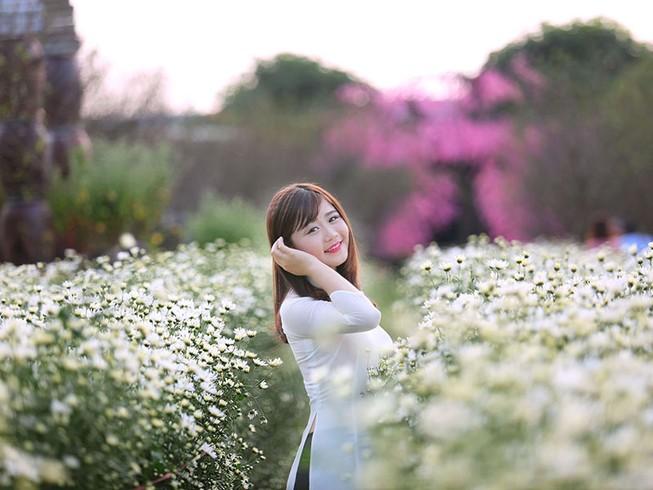 Thiếu nữ Hà thành 'đọ sắc' cùng hoa cúc họa mi