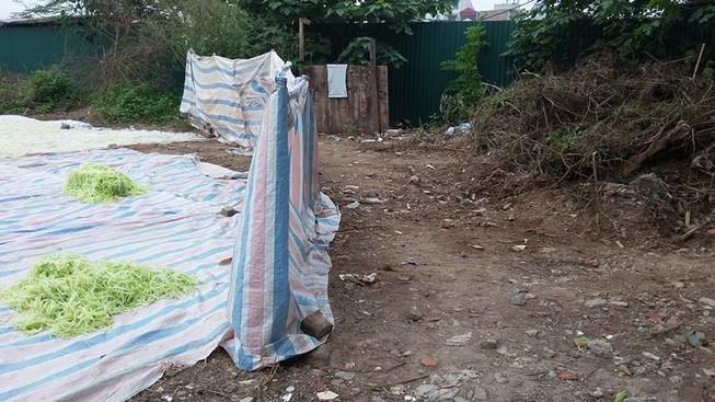 Tiêu hủy 250 kg nguyên liệu mứt bẩn phơi gần khu vệ sinh