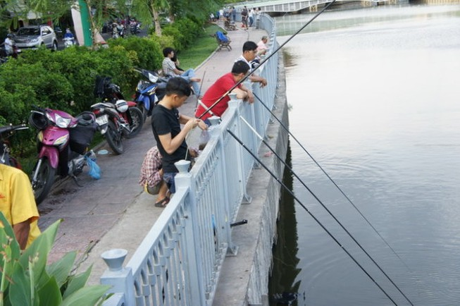 Ẩn họa khi ăn cá ở kênh ô nhiễm