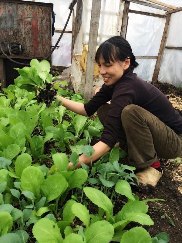 Người phụ nữ Việt sở hữu 2000m vuông rau sạch ở Nga