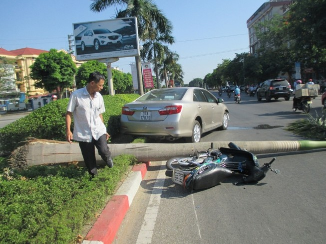 Xe ô tô tông xe máy, càn gãy cả cây cau vua lớn bên đường