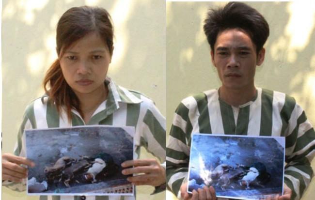Khởi tố, bắt giam hai vợ chồng trộm chó
