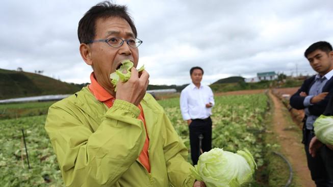 Kết nối doanh nghiệp Nhật Bản - Việt Nam trong lĩnh vực nông nghiệp