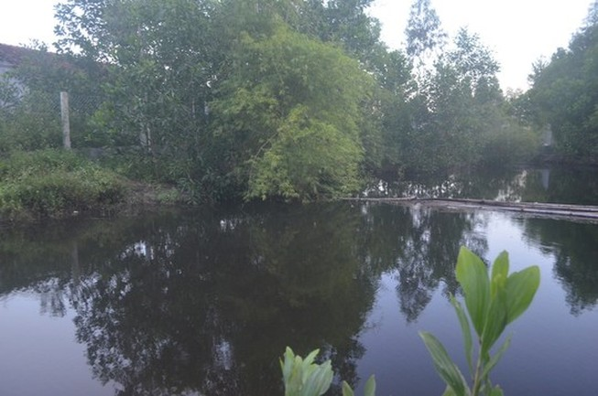 Đi tắm hồ thủy lợi, ba nữ sinh chết đuối thương tâm
