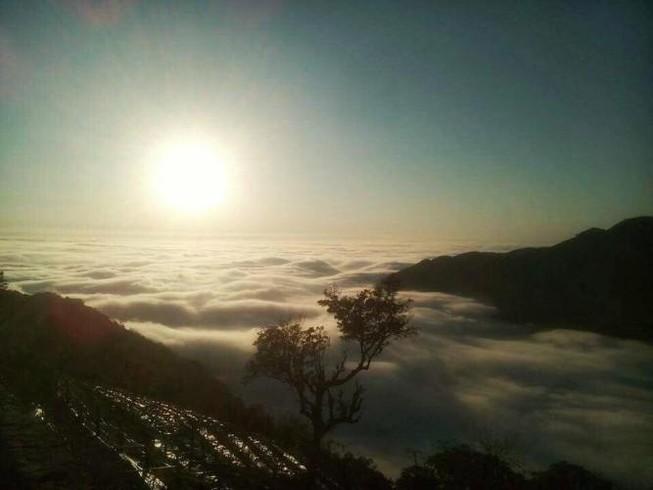 Lên Tam Đảo 'săn' mây