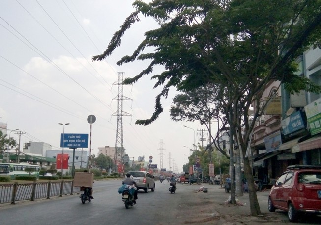 Không cho đốn 162 cây xanh ở đường Kinh Dương Vương