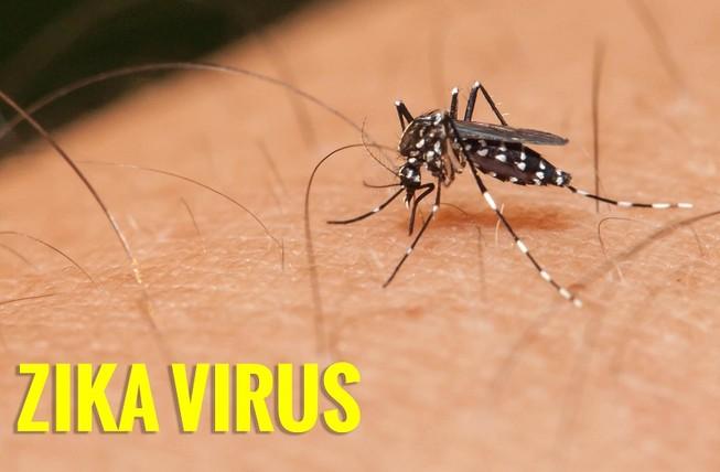 Thêm 1 bệnh nhi nhiễm virus Zika