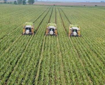 """Chỉ """"đại gia"""" mới làm nông nghiệp công nghệ cao"""