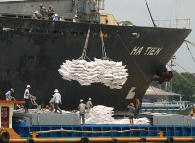 Suýt mất 63 container gạo vì... nhẹ dạ