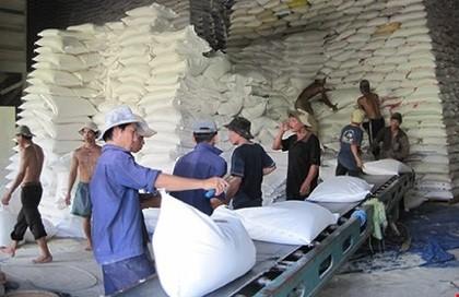 Việt Nam cạnh tranh Campuchia xuất khẩu gạo vào EU