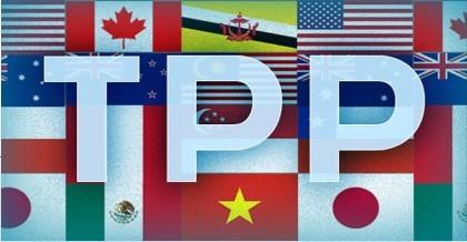 Hơn 90% doanh nghiệp biết quá ít về TPP