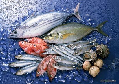 EU cảnh báo chất lượng nhiều lô hàng thủy sản Việt Nam