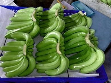 Cảnh báo nhiều DN xuất khẩu trái cây sang UAE bị lừa đảo