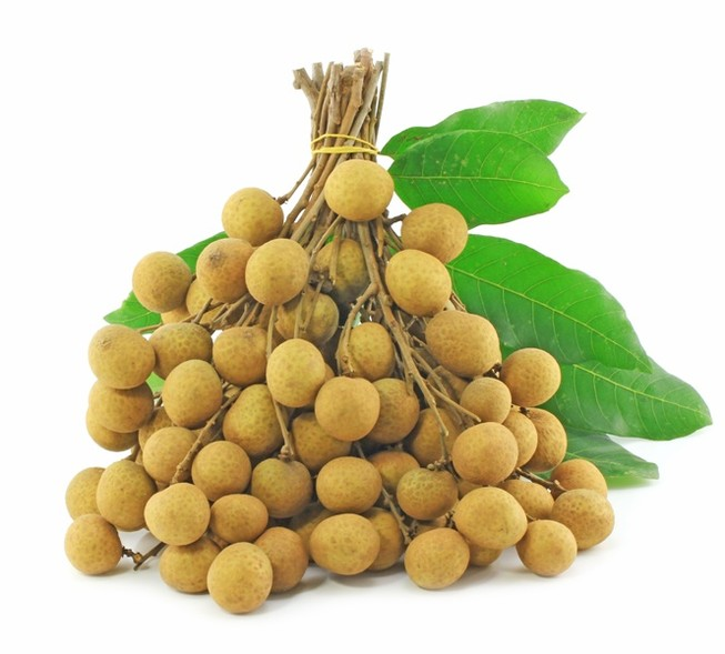 Nhãn tươi Việt Nam lần đầu tiên xuất khẩu vào Malaysia