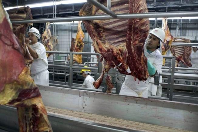 Khẩn cấp ngăn chặn thịt bẩn Brazil vào Việt Nam